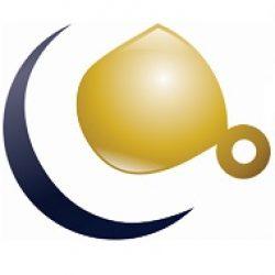 Cebesa Online